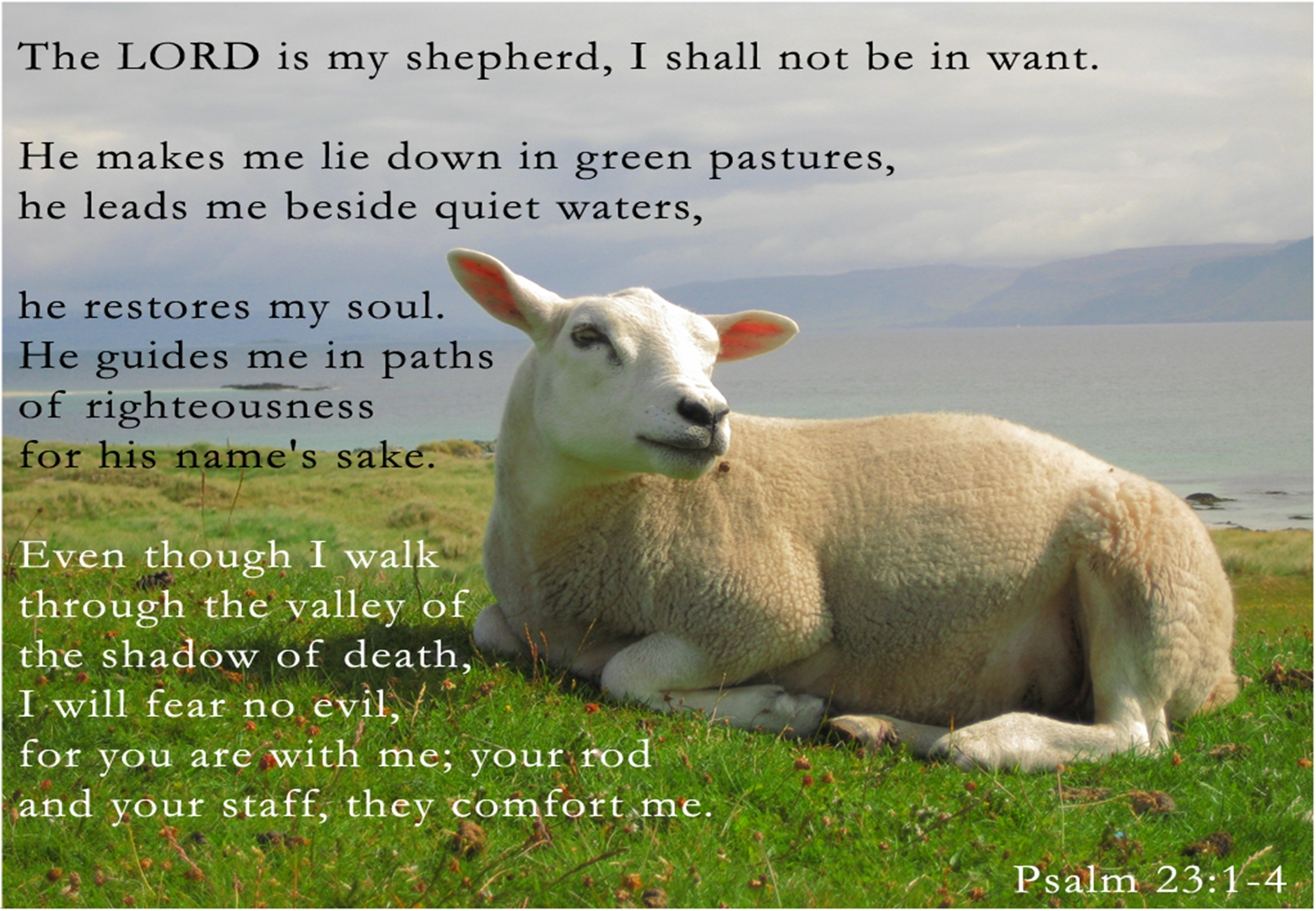 2016 Word Of The Year Prepare Psalm 23 In